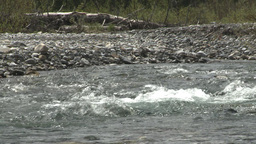 HD2008-6-3-46 elbow river rapids Stock Video Footage