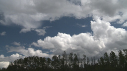 HD2008-6-3-64 TL clouds forest Stock Video Footage