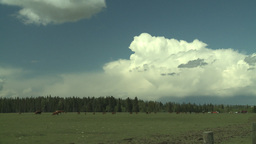 HD2008-6-4-6 cattle ranch storm clouds Stock Video Footage
