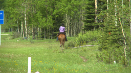 HD2008-6-5-61 horseman Stock Video Footage