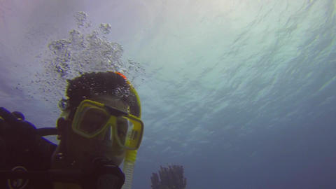 upward angle of a scuba diver swimming at the grea Stock Video Footage
