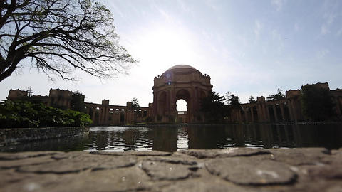 beautiful view of palace of fine arts and birds Stock Video Footage