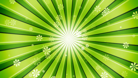 Green Sun Burst Flowers Animation