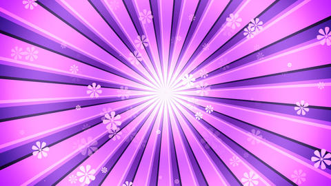 Pink Burst Flowers Animation