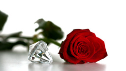 Diamond spinning beside red rose on white backgrou Stock Video Footage