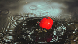 Red scotch bonnet chili pepper falling in water Live Action