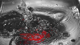 Red bell pepper falling into water with drops Stock Video Footage