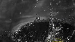 Corn cob falling into water Footage
