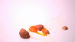 Egg breaking Live Action