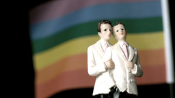 Gay groom cake toppers in front of rainbow flag mo Footage