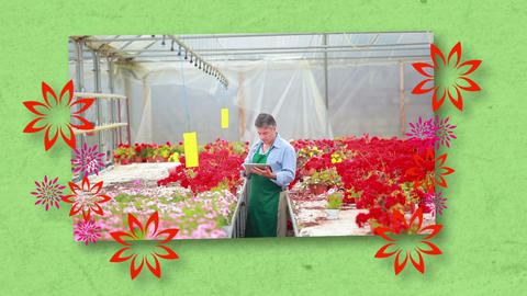 Montage of florists at work Stock Video Footage