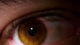 Human Eye Macro Reacting To Flashlight 1 stock footage