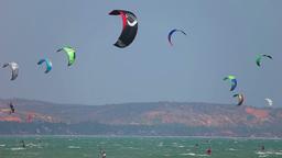 Kites stock footage