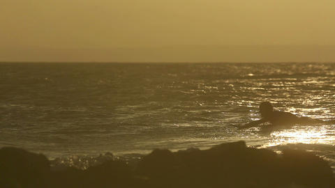 Surfing At The Dusk stock footage