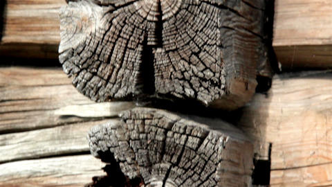 Cracks in the log of the cabin log house Footage