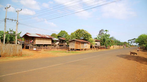 Lao village life around coffee planted Bolaven Pla Stock Video Footage