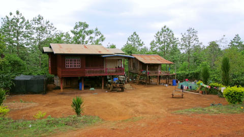 Lao village life around coffee planted Bolaven Pla Footage