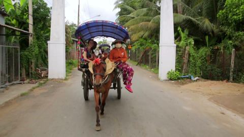 MEKONG DELTA, VIETNAM - MAY 2014: local horse ride Stock Video Footage