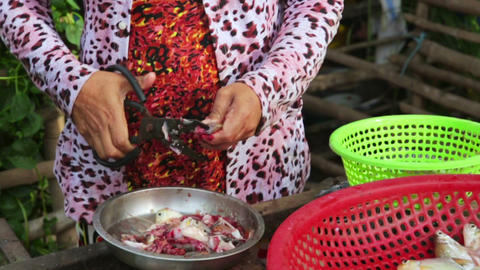 MEKONG DELTA, VIETNAM - MAY 2014: Ordinary life Stock Video Footage