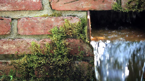 Garden waterfall Stock Video Footage