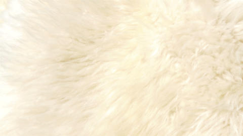 A lambskin or fur that is white in color GH4 4K UH Footage