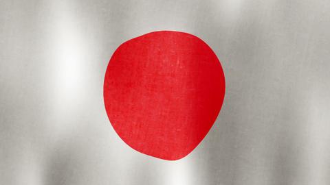 Japanese Flag Waving, Loopable, 20 sec Animation