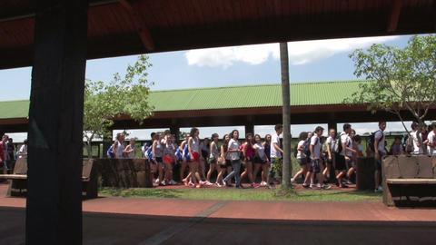 005 Schoolchildren passing by Footage