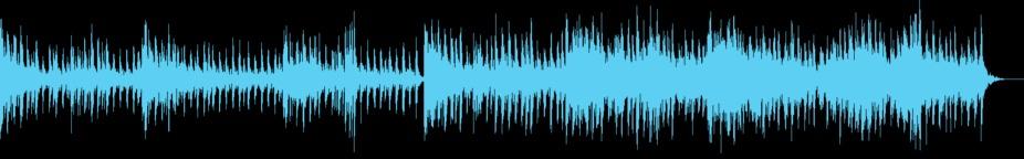 Elaborate Schemes Music