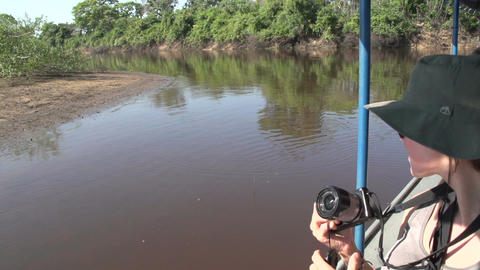 020 Pantanal , Woman takes picture of Yacare caima Footage