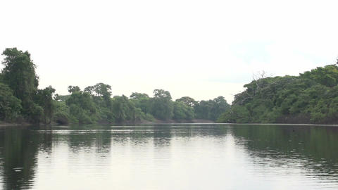 029 Pantanal , boating on the river , slowmotion Footage