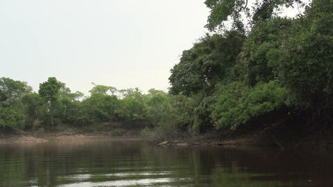 042 Pantanal , boating on the river , slowmotion Footage
