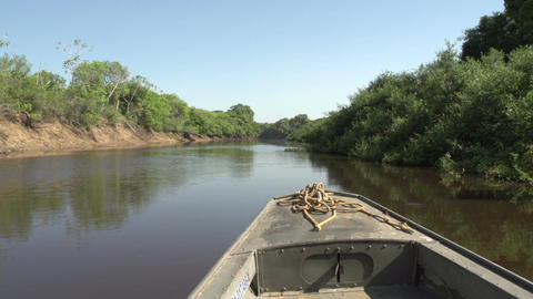 081 Pantanal , boating on the river , bleu sky Stock Video Footage