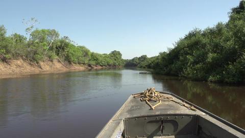 081 Pantanal , boating on the river , bleu sky Footage