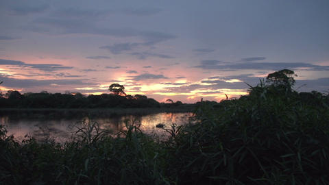 0135 Pantanal , sunset in the Pantanal wetlands Footage