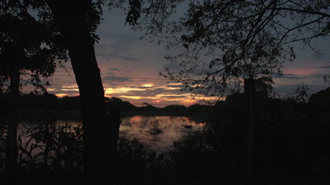 0137 Pantanal , sunset in the Pantanal wetlands Footage