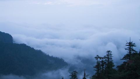 Mist in the Mt Emei Stock Video Footage
