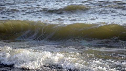 Waves splash on pebble sea shore Footage