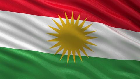 Flag of Kurdistan seamless loop CG動画