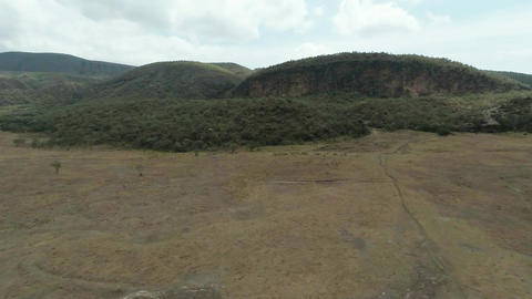 Savanna. Landscape. Aerial shot Footage