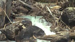 HD2008-6-6-54 mountain creek Stock Video Footage
