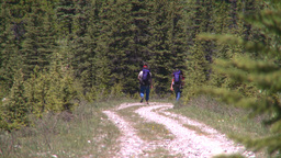 HD2008-6-9-3 hikers on trail Footage