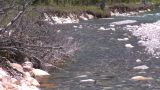 HD2008-6-9-11 mountain stream Footage