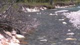 HD2008-6-9-11 mountain stream Stock Video Footage