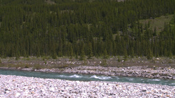 HD2008-6-9-13 mountain stream Stock Video Footage
