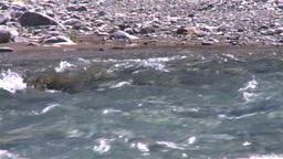 HD2008-6-9-17 mountain stream Stock Video Footage