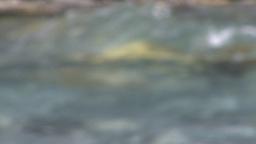 HD2008-6-9-19 mountain stream rack Stock Video Footage