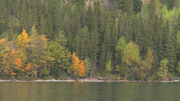 HD2008-10-1-25 lake boat ride autumn colors Footage