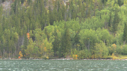 HD2008-10-1-45 lake boat ride autumn colors Stock Video Footage