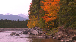 HD2008-10-1-78 lakeshore autumn colors Stock Video Footage