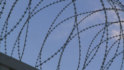 HD 2008 10 9 4 military razor wire Stock Video Footage
